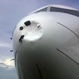 Boeing 737-800 Garuda vs elang 1kg – Palangkaraya 21 April 2012