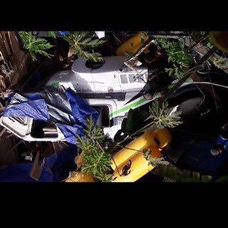 Helikopter Bell 206 Unindo jatuh di Enarotali